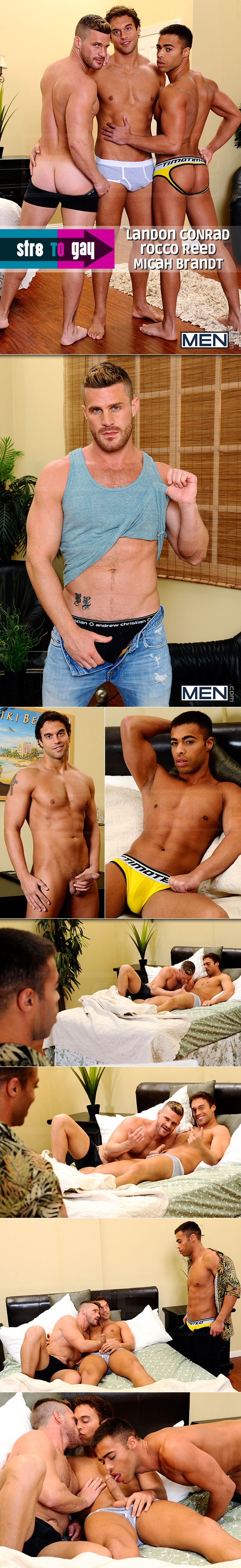 """Men.com: Rocco Reed, Landon Conrad and Micah Brandt's threesome in """"My Bride's Hot Brother: The Honeymoon"""""""